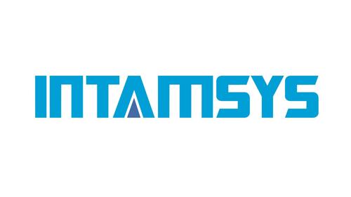 Intamsys logo
