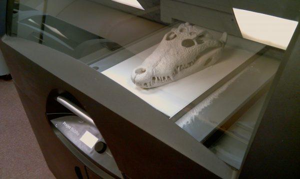 ProJet 860 Pro skull